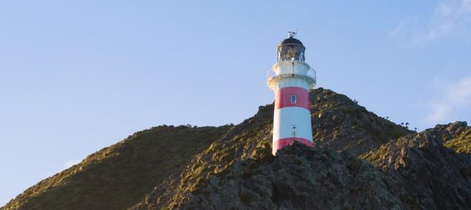 Cape Palliser – Durch dunkle Schluchten zum Leuchtturm