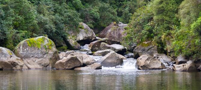 Te-Urewera-Nationalpark – In unberührten Wäldern